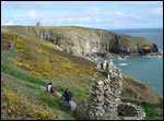 Ardmore Cliff Walk - things to do in Ardmore, Co. Waterford