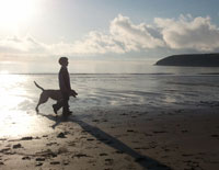 Early_Morning_Beach_Walk - things to do in Ardmore, Co. Waterford